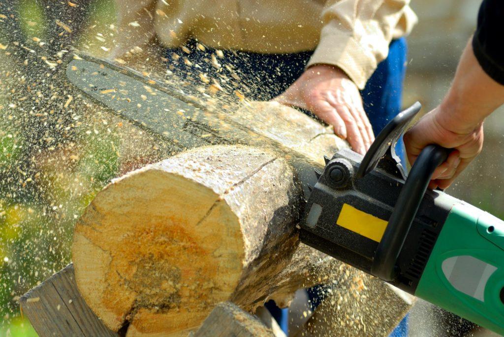 men cutting the tree log